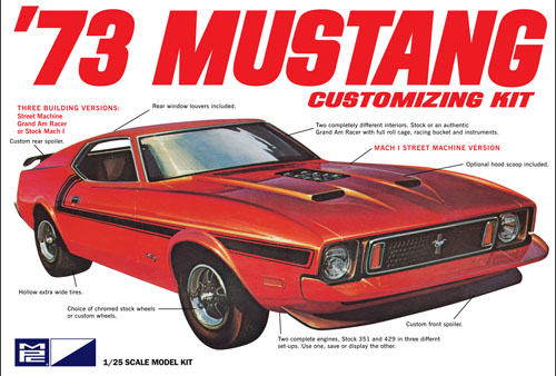 1973 Ford Mustang 3-in-1 Grand Am Racing, Mach 1, Street Machine
